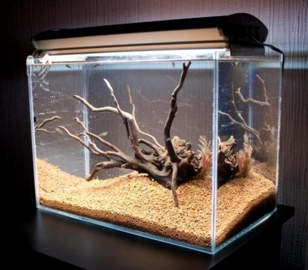 Коряги своими руками в аквариум