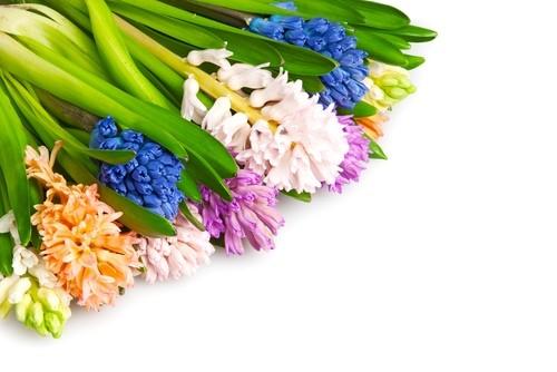 Як оформити квіти