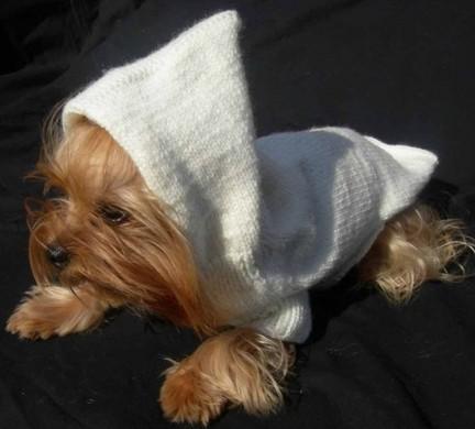 Як зробити одяг для собак